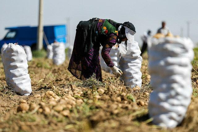 377 روستای آذربایجان شرقی خالی از سکنه است