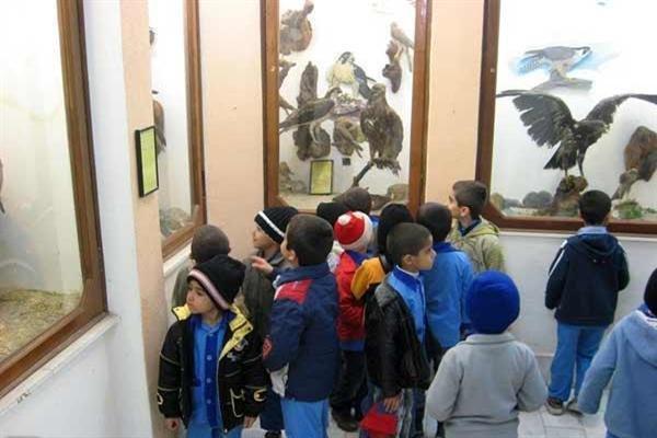 درهای میراث فرهنگی کی به روی بچه ها باز می شود؟
