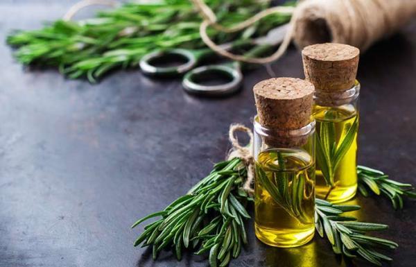 دارو گیاهی برای رشد سریع مو