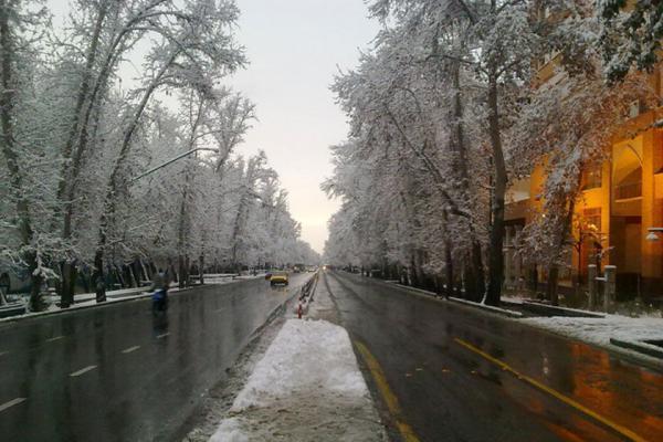 خبرنگاران آخرین خبر از ثبت جهانی خیابان ولیعصر(عج) پایتخت