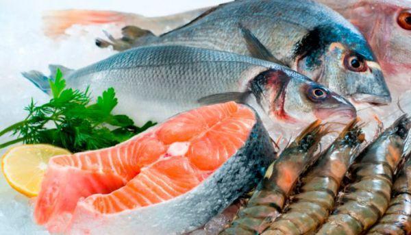 13 پروژه که فراوری محصولات دریایی را توسعه می دهد کدامند